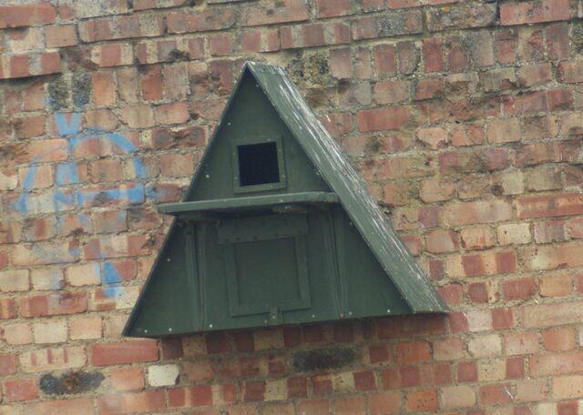File:Barn Owl Nest Box.JPG
