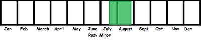 Rosy Minor TL