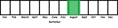 The Butterbur TL