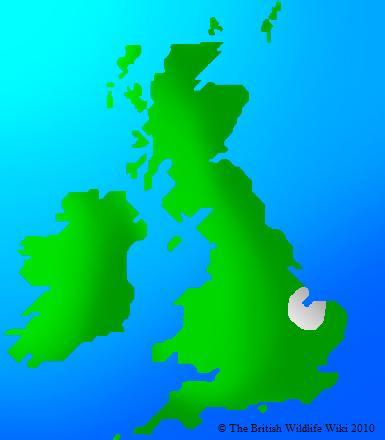 File:Coal Tit Map.jpg