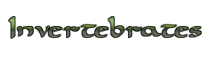 File:Invertebrates.png