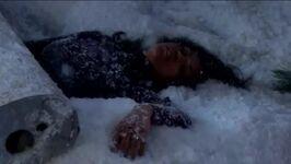 Hilary after plane crash