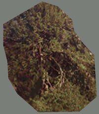 DromEd Object Model treefl1
