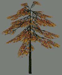 DromEd Object Model treefal1