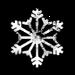 Icon Snow