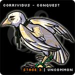 CorriC3
