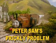 PeterSam'sPricklyProblem