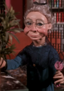 Smiling-grandma