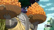 Elephant harvest