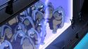 Armored thundercats
