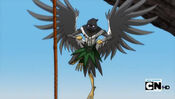 Bird Executioner 2011
