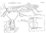Original Concept Designs - Hopper - 001