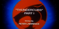 ThunderCubs - Part I