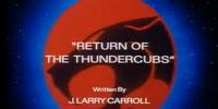 Return of the ThunderCubs