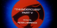ThunderCubs - Part V