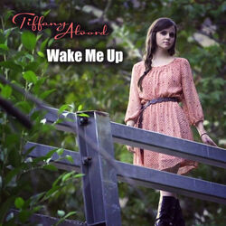 Wake me up, cover