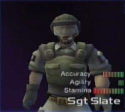SgtSlate