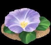 Decoration 1x1 waterflower tn@2x