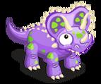 Triceratops teen@2x