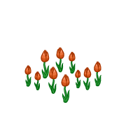 Decoration springtulips orange thumbnail@2x