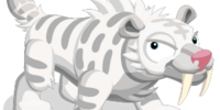White Sabretooth Tiger