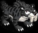 Black Sabretooth Tiger