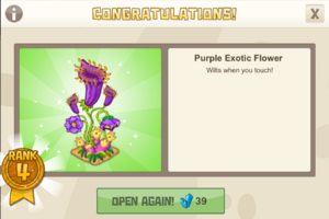 New year 4 purple exotic flower
