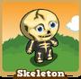 Store skeleton