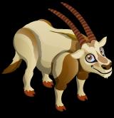 Scimitar Horned Oryx single