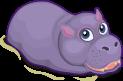 Hippopotamus single