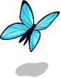 Blue butterfly1 static