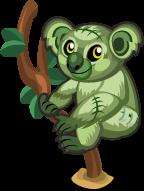 Zombie Koala single