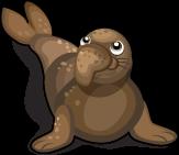 Elephant Seal single