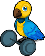 Strong Parrot single