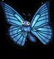 Blue Morpho Butterfly single