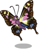 Purple spotted swallowtail static