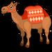 Caravan camel single