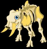 Skeleton Elephant single