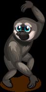 Gibbon single