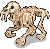 Sabertooth tiger skeleton single