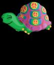 Zen tortoise an