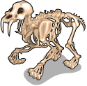 Sabertooth tiger skeleton static