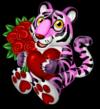 Rose tiger single