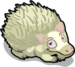Albino hedgehog single