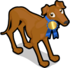 Greyhound single