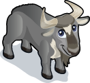 Wildebeest single