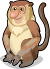 Proboscis Monkey single