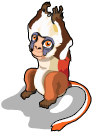 Red colobus monkey an