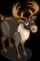 Caribou single
