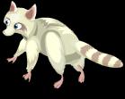 Albino raccoon an